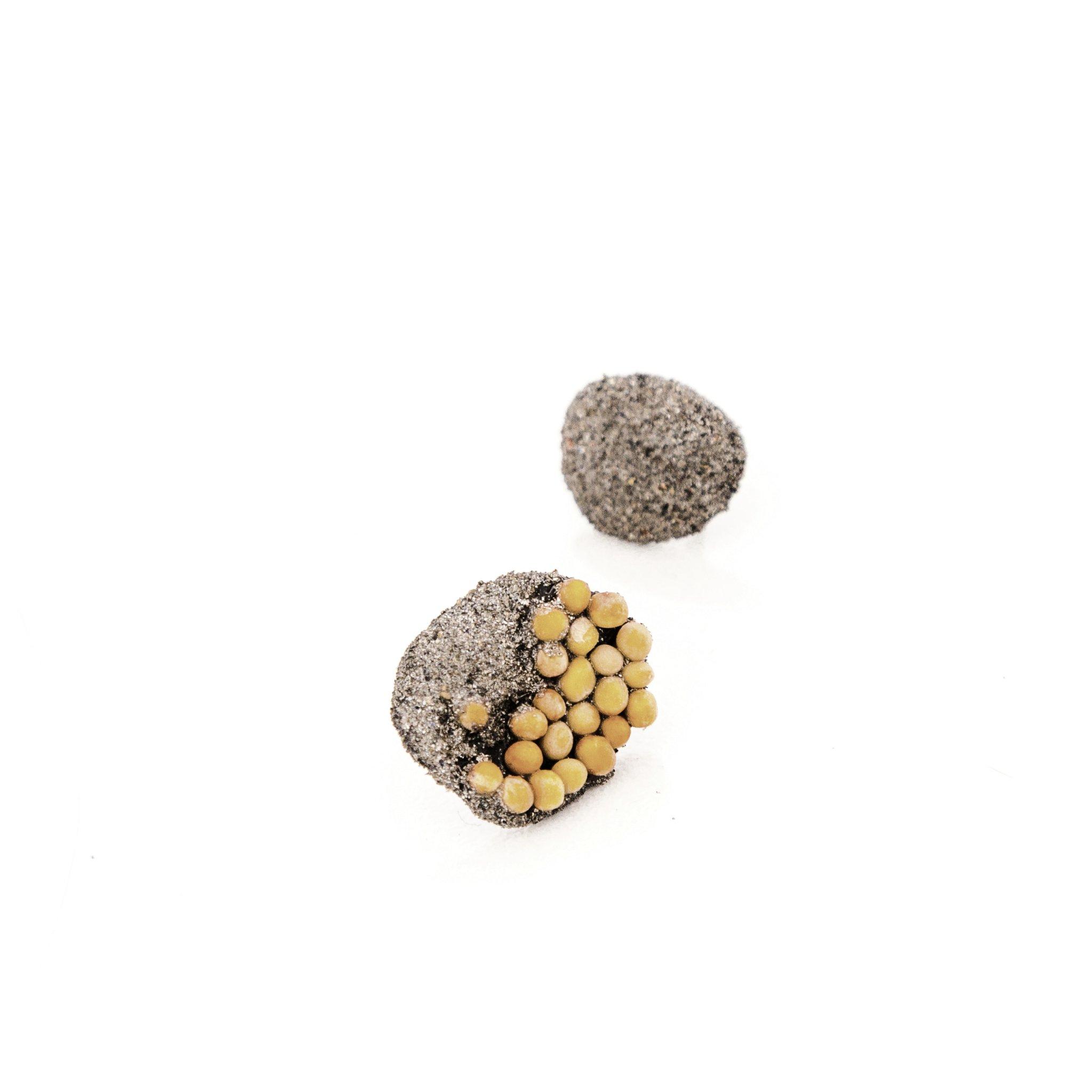 cercei-mici-mustar